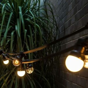Low Voltage Commercial Festoon – (50cm Globe Spacing)