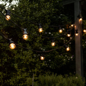 Festoon Party Lighting Hanging In Garden
