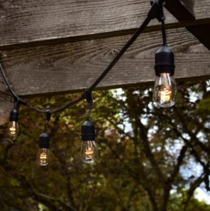hanging pendant festoon lights