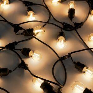 hanging socket festoon lights warm white bulbs